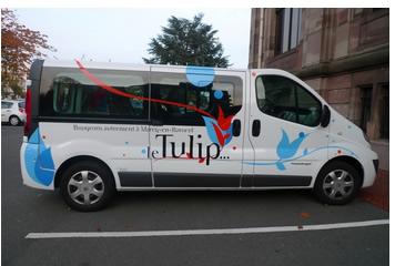bus-tulip
